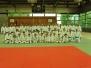 Great Judo 2013